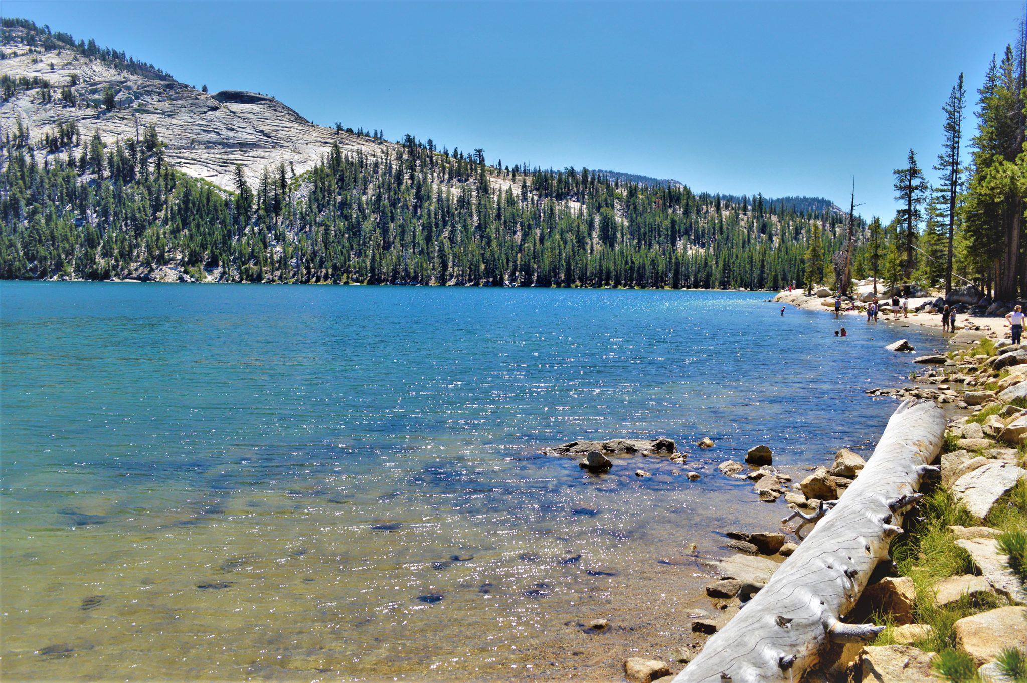 Lake in Yosemite national Park, California