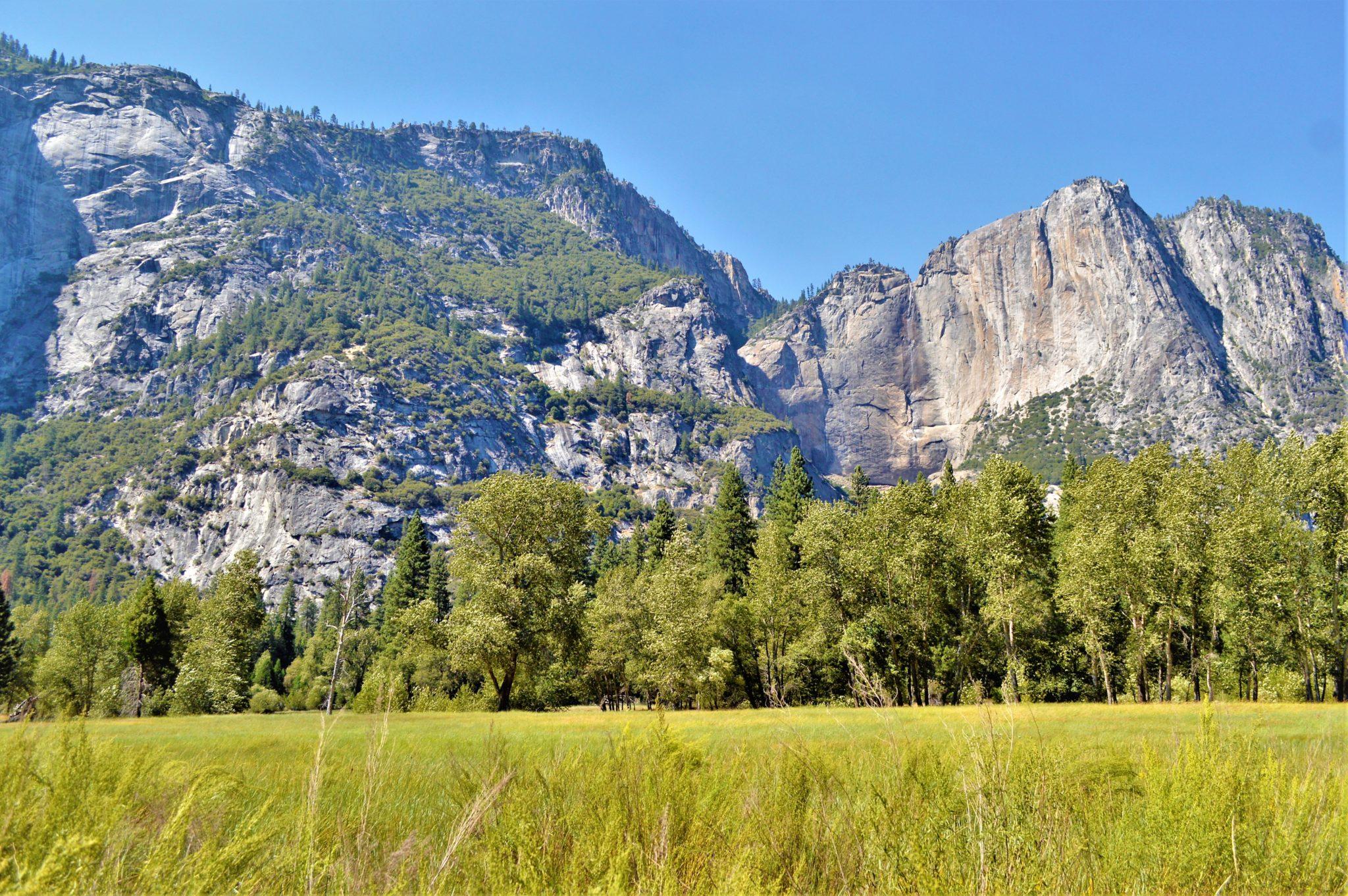 Meadows, Yosemite National Park, California, things to do at yosemite