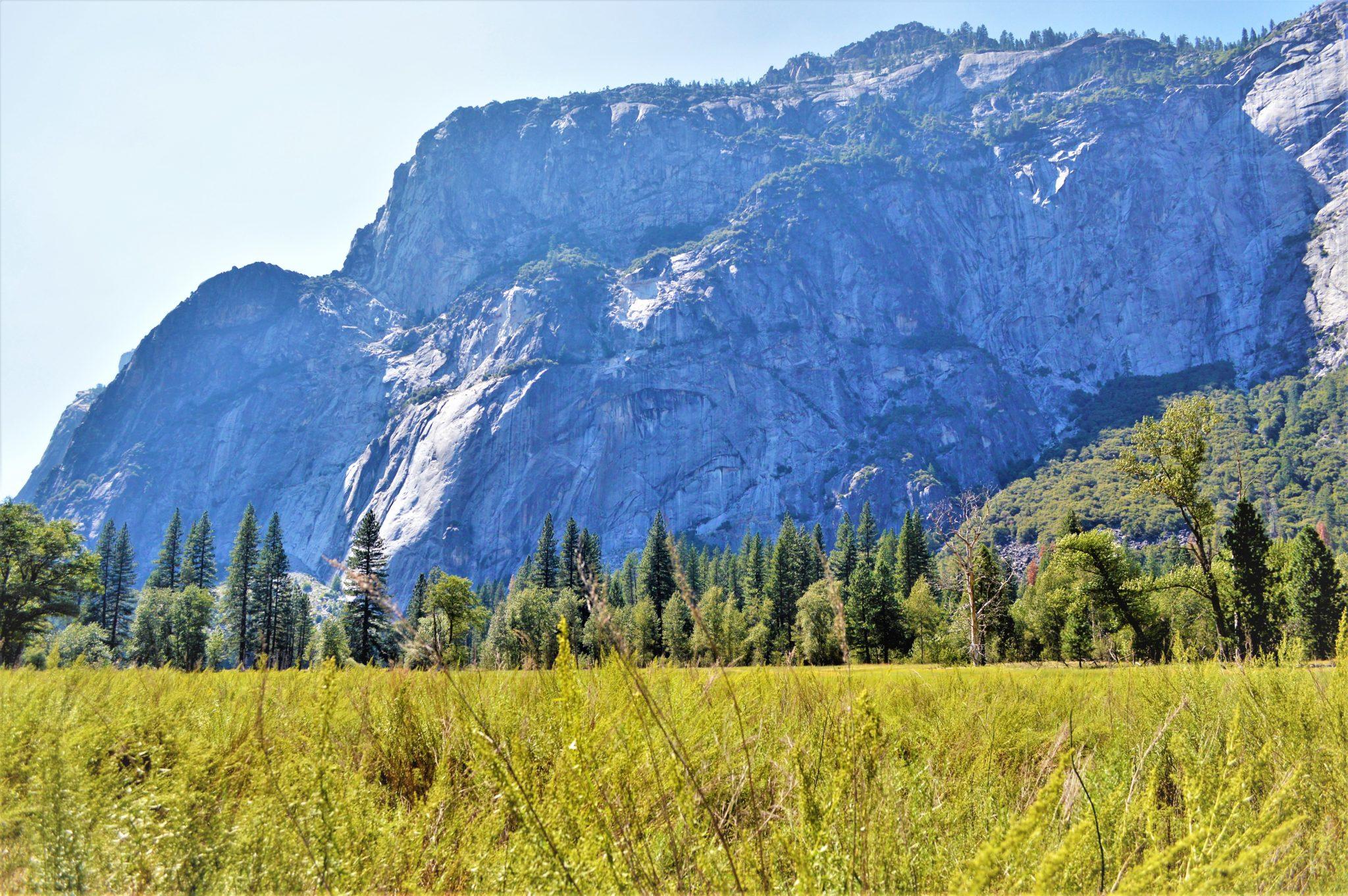 Mountains and meadows, Yosemite National Park, California