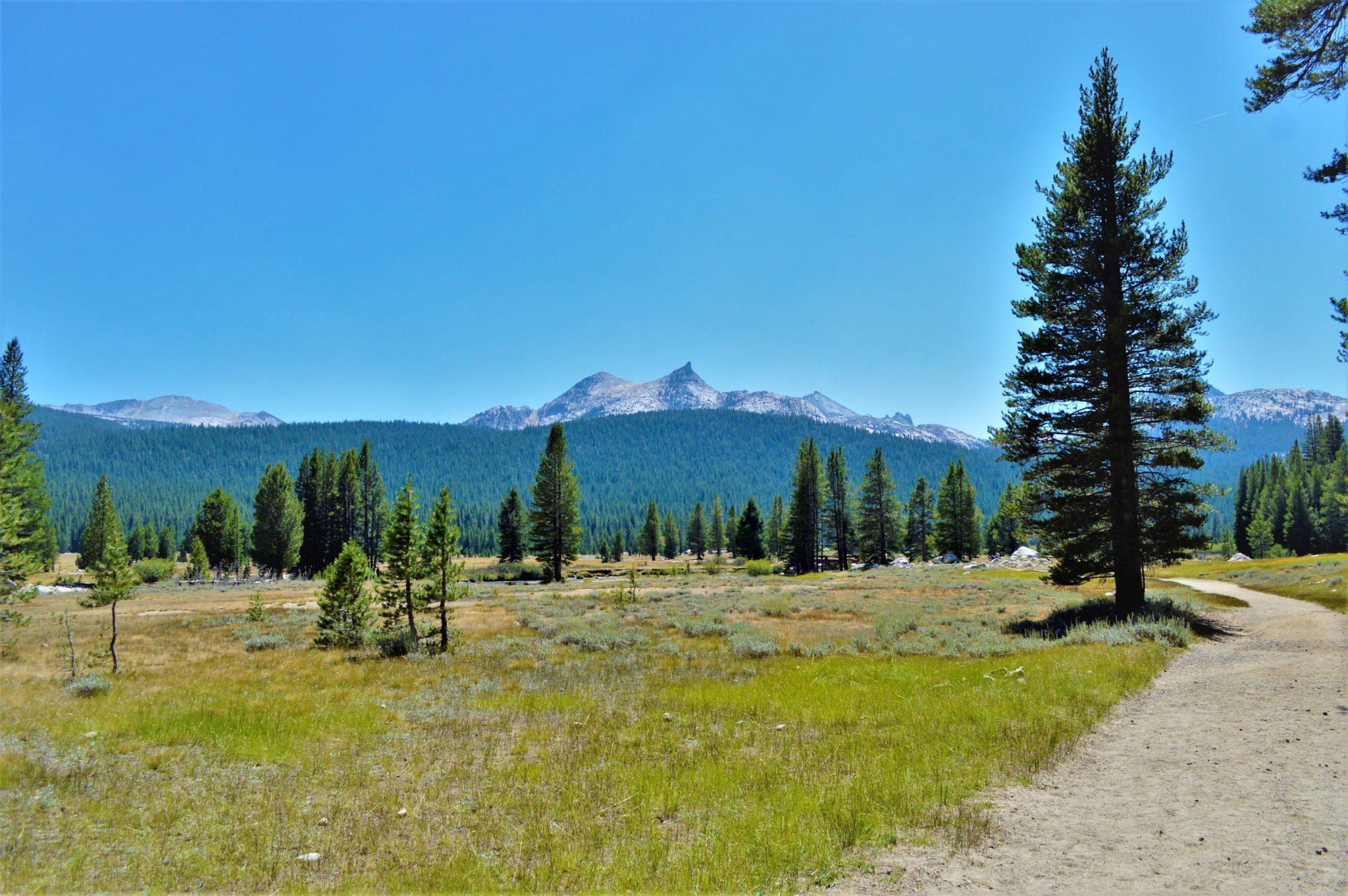 PCT Pacific Crest Trail, Yosemite National Park, California