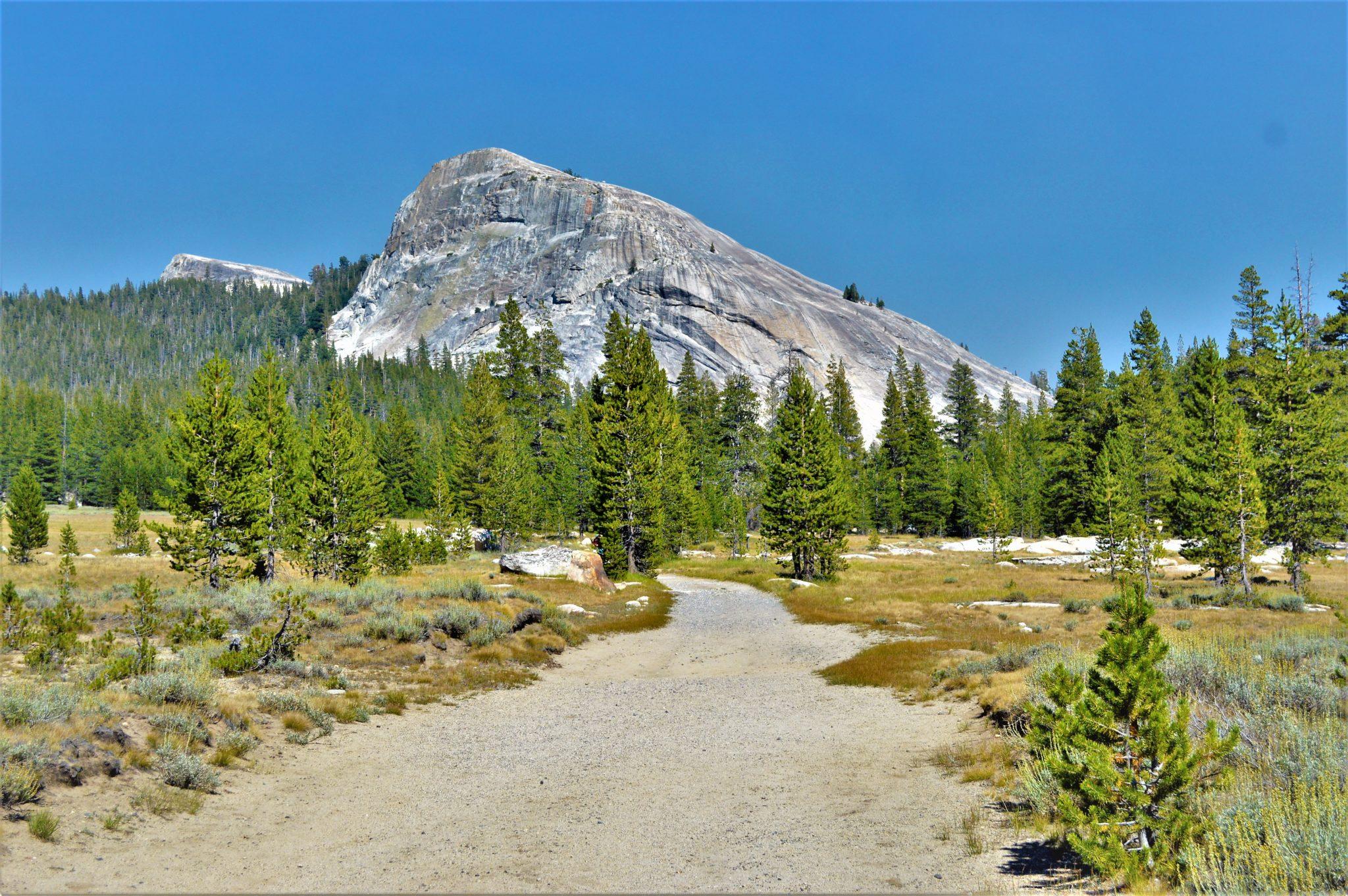 PCT hiking trail, Yosemite National Park, California, things to do at yosemite