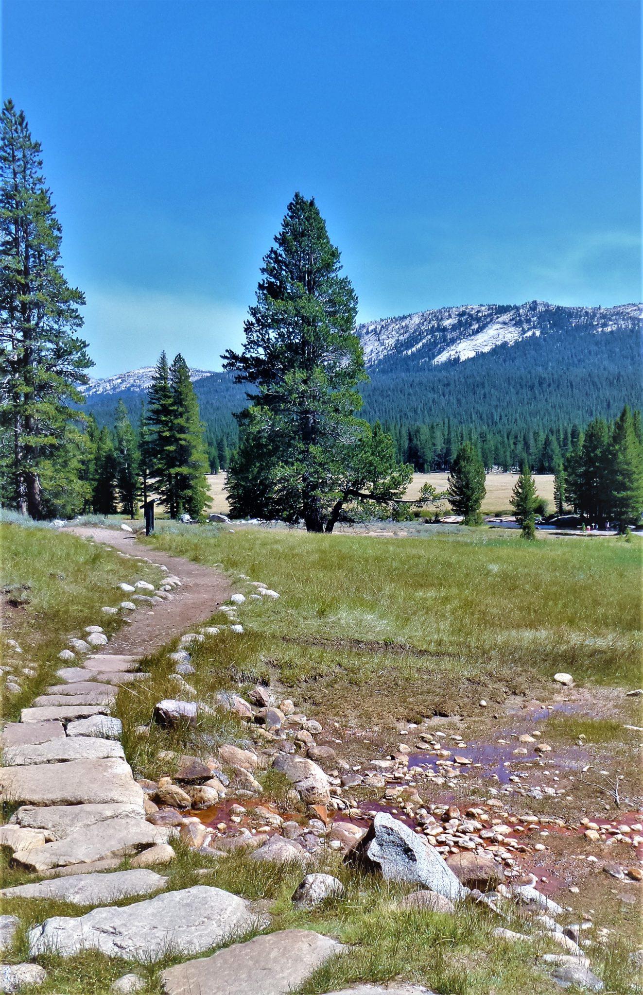 PCT path, Yosemite, California