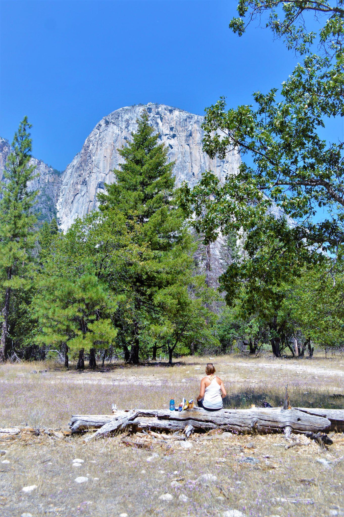Picnic at El Capitan mountain, Yosemite National Park, things to do at yosemite