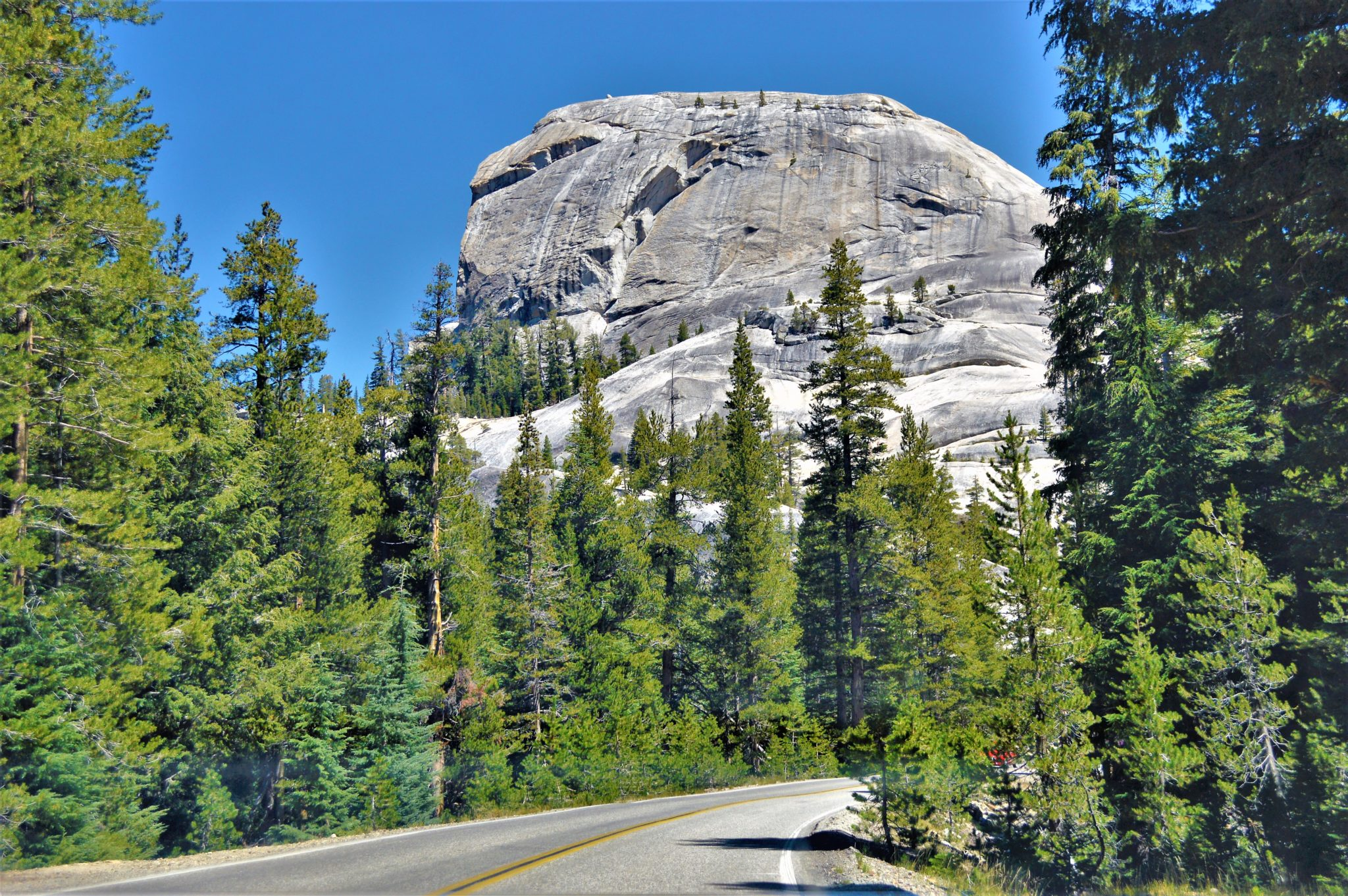 Road trip Yosemite, California