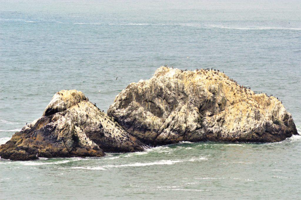 Seal Rock, San Francisco, Pacific Ocean, USA