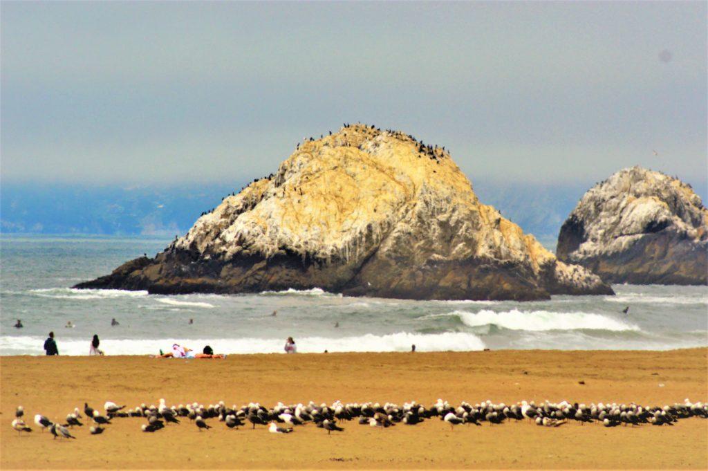 Seal Rock, San Francisco, USA