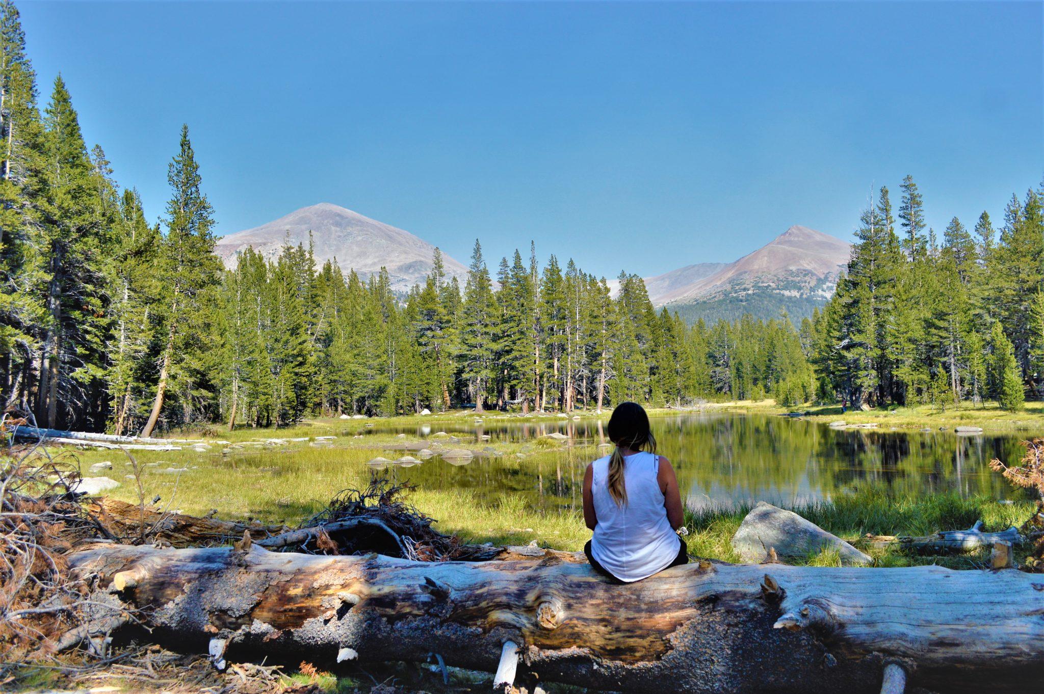 Sitting at lake, Yosemite National Park, California, things to do at yosemite