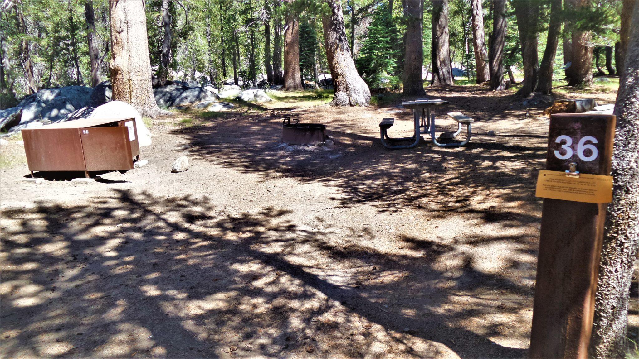 Spot 36 Porcupine Flat Campground, Yosemite