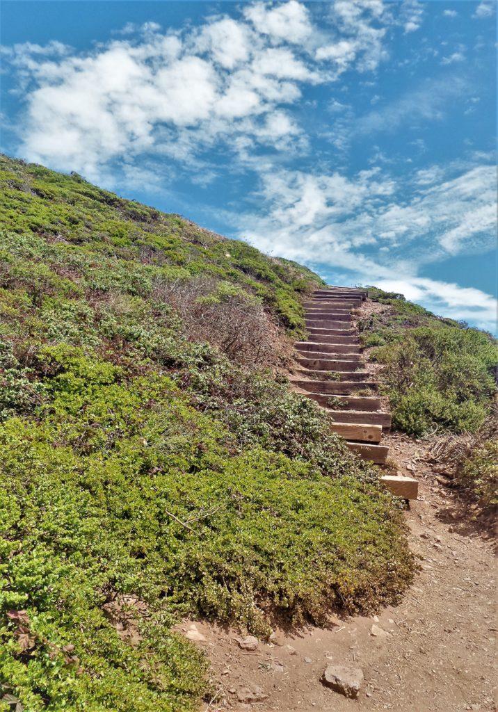 Steps up toTwin Peaks, San Francisco, USA