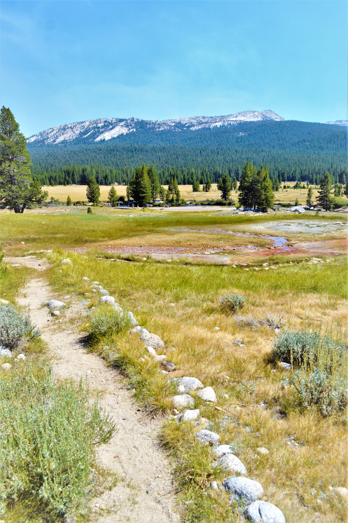 Trail, PCT, Yosemite National Park, California