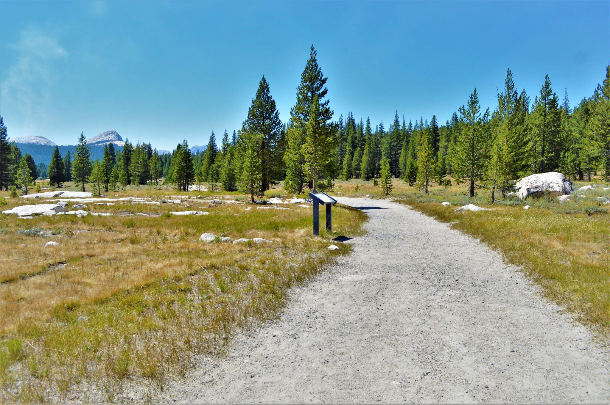 Trail in Yosemite National Park, California