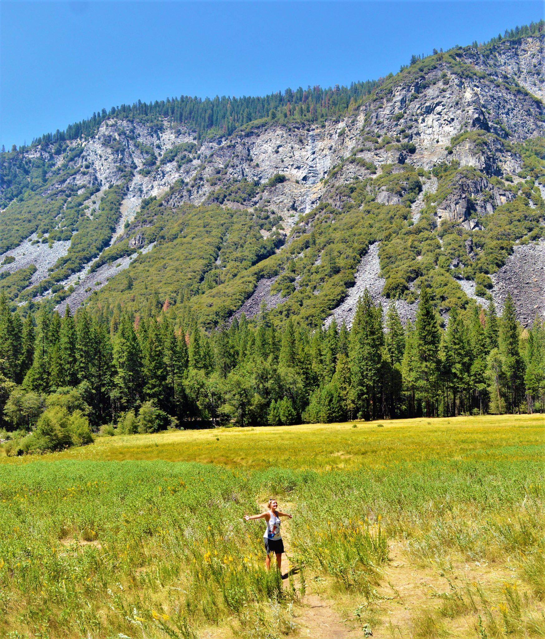 Tulumn Meadows, Yosemite, California