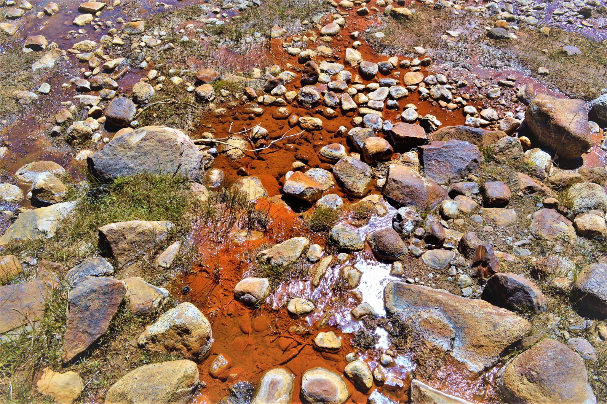 Water by soda springs, Yosemite National park, things to do at yosemite, California
