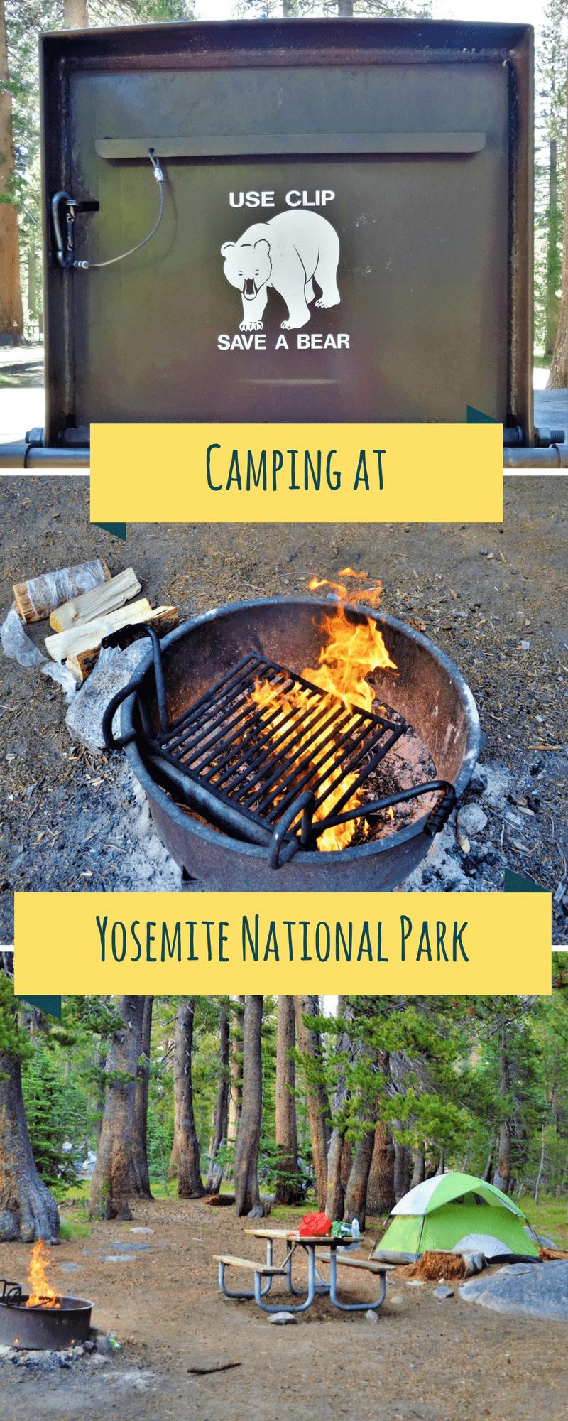 Camping at Yosemite National Park, California