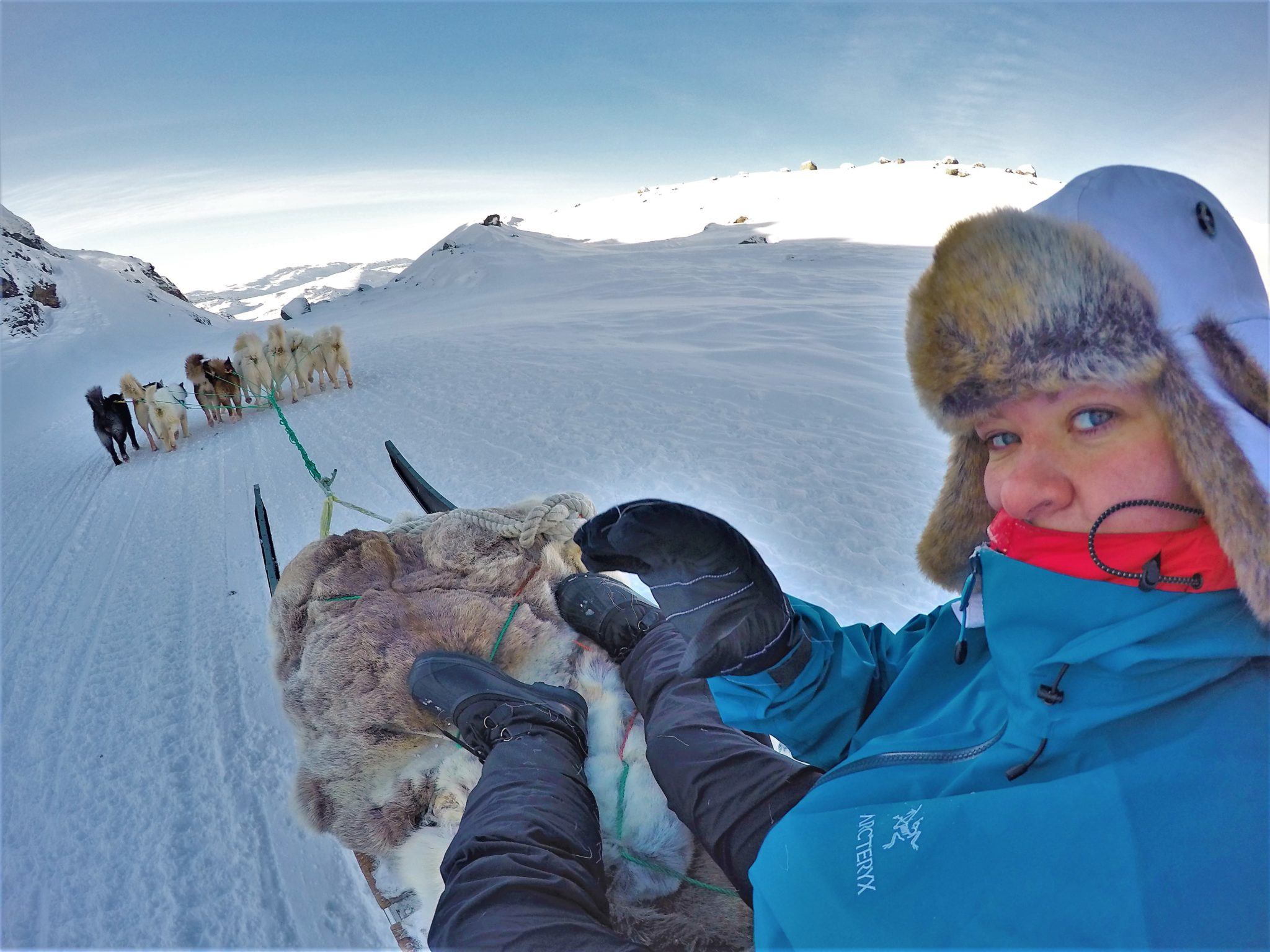 Dog-sledding-greenland-arcteryx-jacket-review