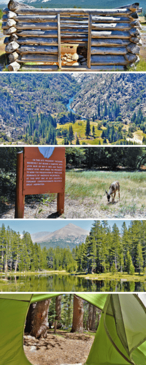 Top things to do at Yosemite National Park, California