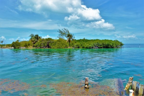 The Split, Caye Caulker, Belize