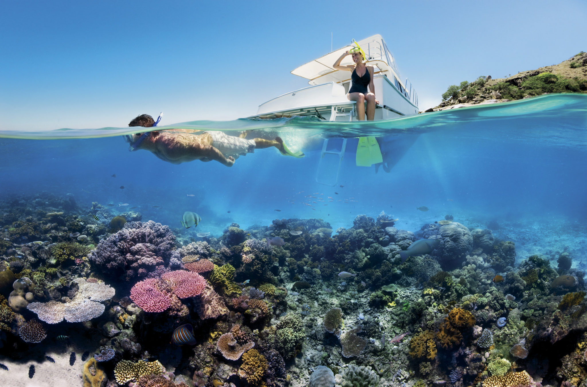 Top Reasons To Go For A Reef Tour This Year