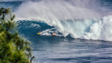 9 Places for SUP boarding in the USA