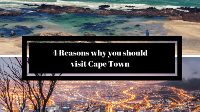 4 Reasons why you should visit Cape Town