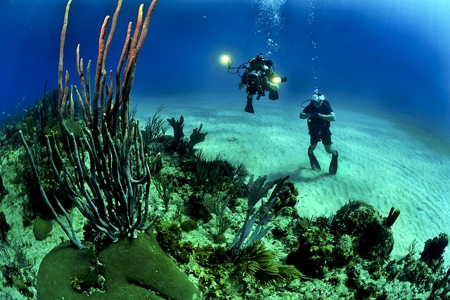 The 3 Most Beautiful Scuba Diving Locations Around the World
