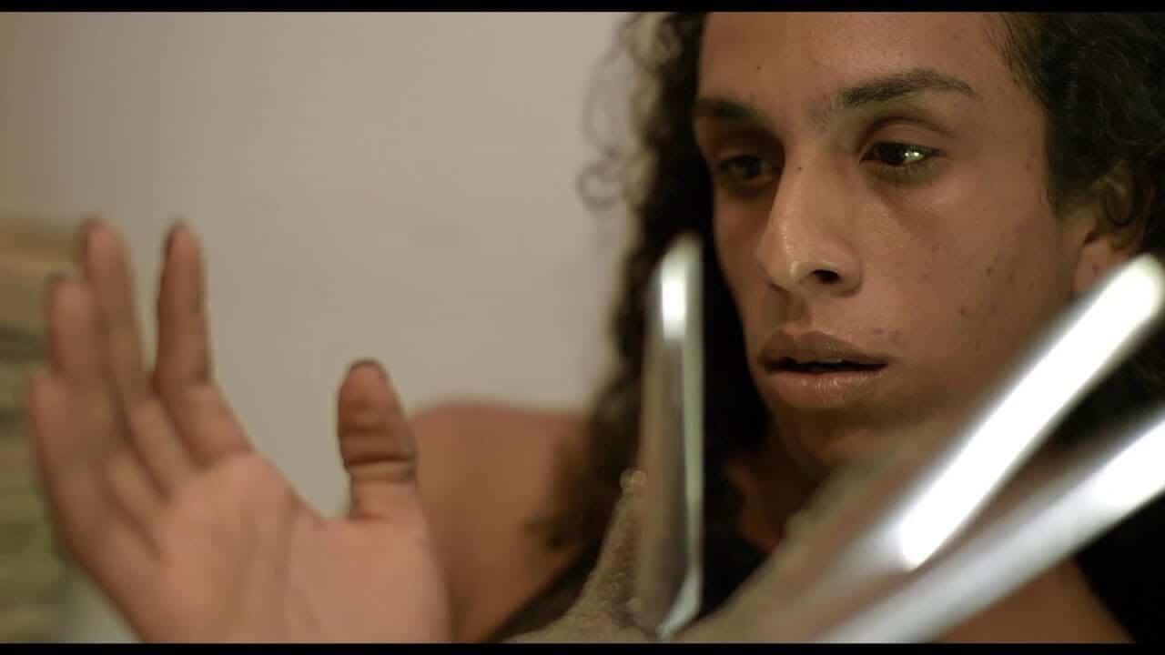 bixa travesty best trans movies